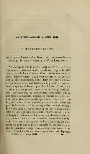 I. Travaux Inedits. Sur le Genre Ramphocelus, Desm., et Trois Nouvelles Especes qui lui Appartiennent